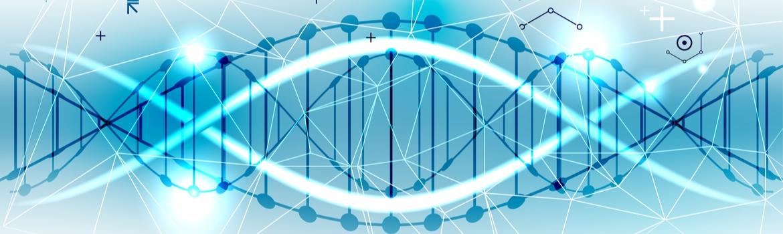 DNA is geen harde wiskunde: het belang van piekenprofielen