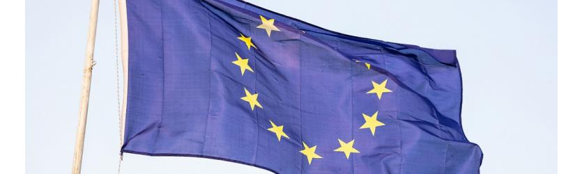Het richtlijnvoorstel met betrekking tot grensoverschrijdende omzettingen, fusies en splitsingen: een opmerkelijke fiscale paragraaf